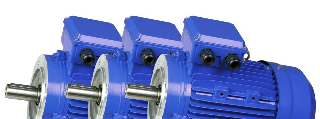 Motores eléctricos asíncronos trifásicos Potencia Incrementada Eficiencia IE1
